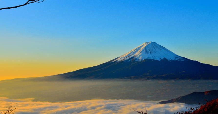 Japonia uważa potrąconego podatki od wygranych cudzoziemca