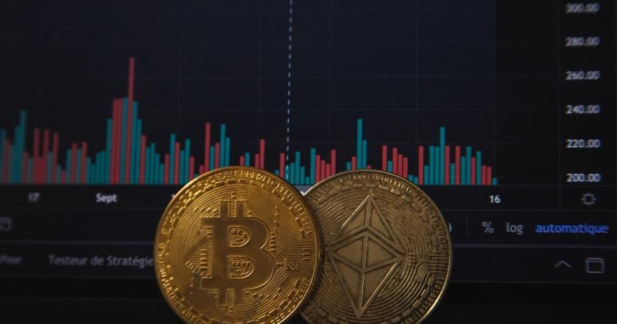 Hazard Bitcoin wzrośnie po ostatnim ogłoszeniu PayPal